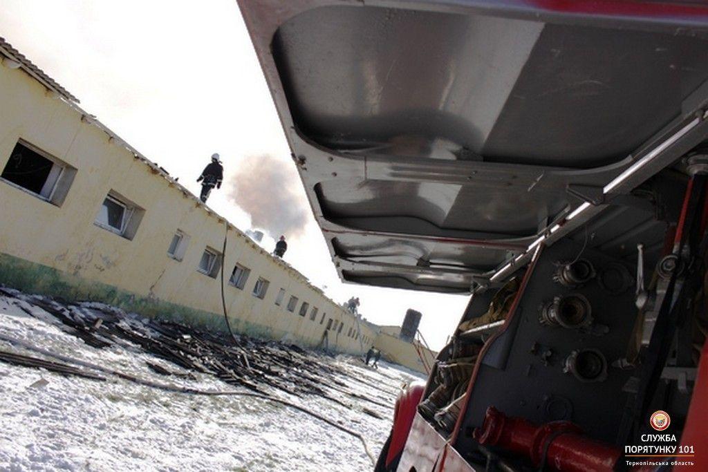 На момент прибуття рятувальників площа горіння становила близько 800 м кв. / ternopil.dsns.gov.ua