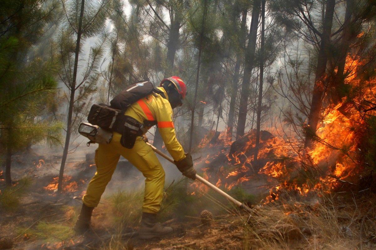 Пожежі в Чилі / Reuters