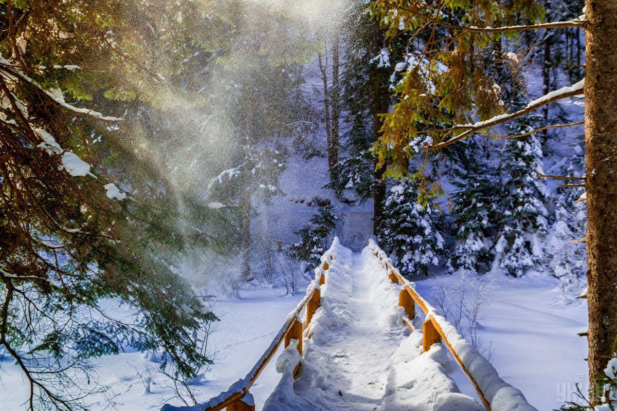У Карпатах зберігається лавинна небезпека / Фото: УНІАН