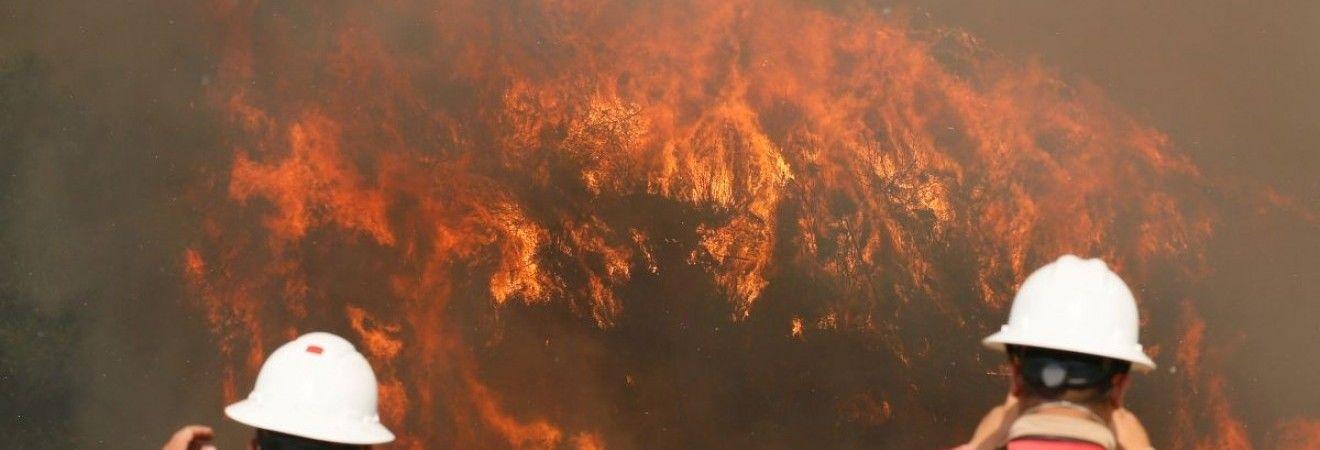 У Росії горить майже 22 тисячі га лісу