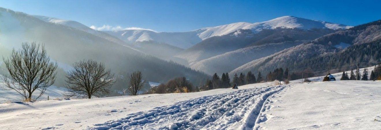 У Закарпатській області на дорогу зійшло кілька снігових лавин