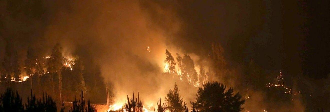 В Черногории эвакуируют туристов из двух районов из-за лесных пожаров