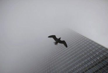 Перший рівень небезпечності: українців попереджають про туман