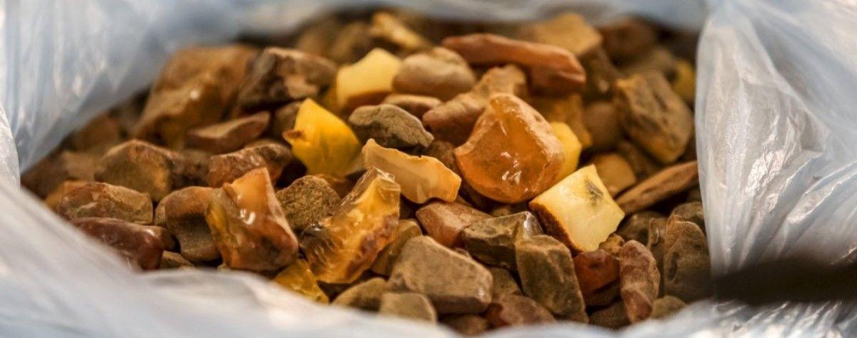 Посадовець повідомив, що з 2009 року тільки на Рівненщині  було  розграбовано понад 100 тонн бурштину / tsn.ua