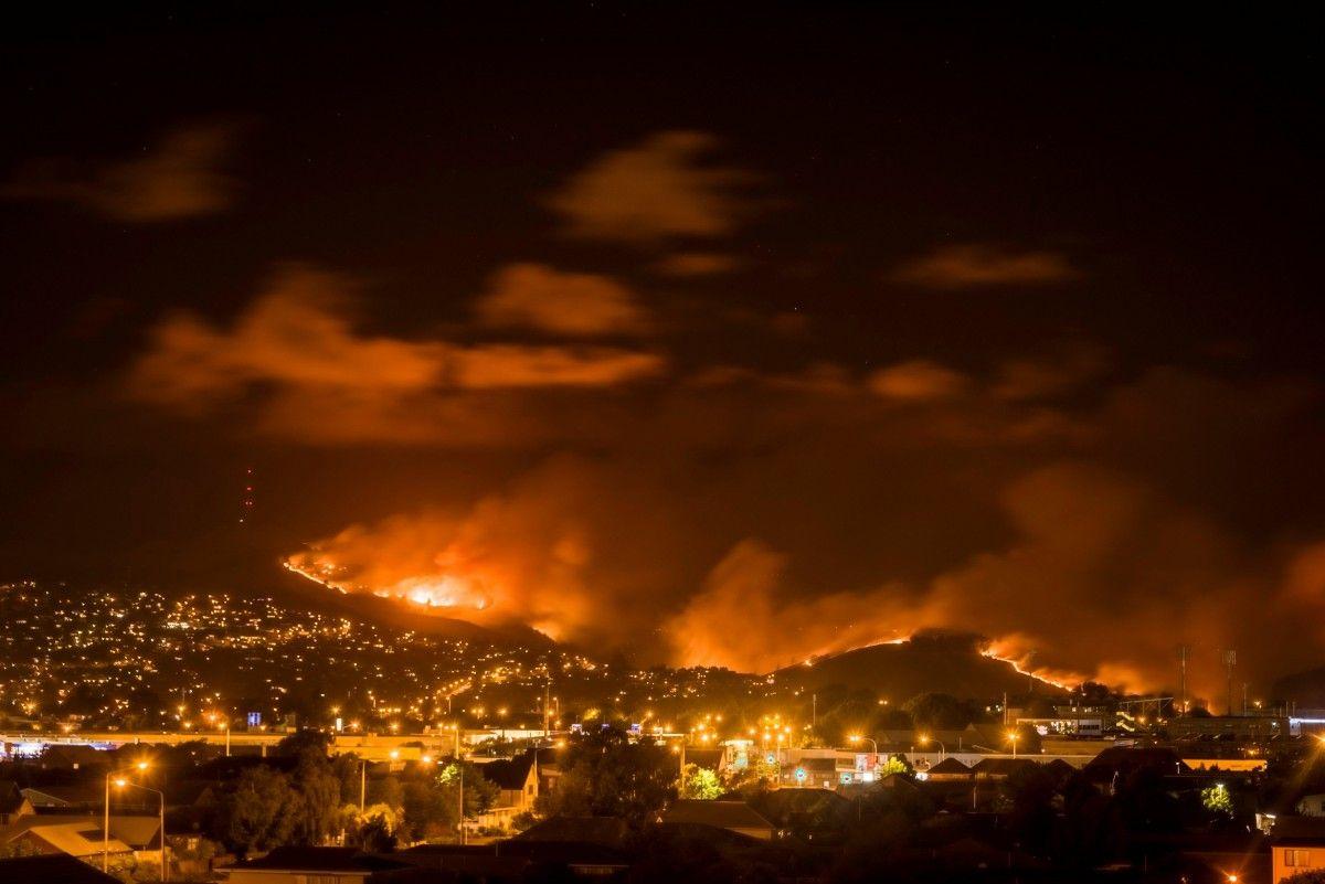 Пожежа в Новій Зеландії / Reuters