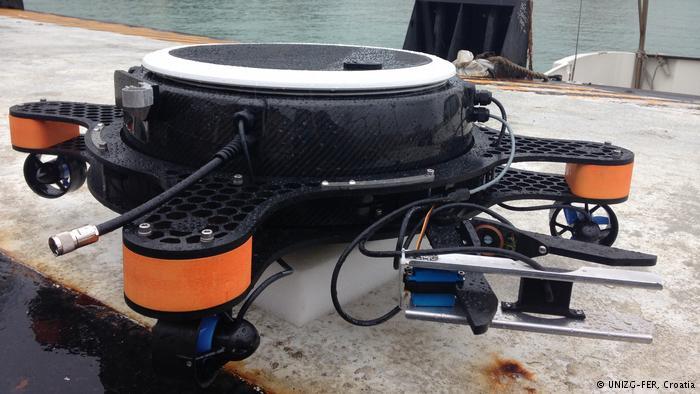 Зграї рибороботів запустять у венеціанську лагуну