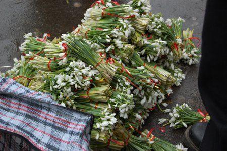 Многие покупатели подснежников не знают о том, что совершают преступление против природы, покупая такие букеты / pryroda.in.ua