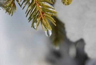 Погода на вихідні: в Україні буде сухо і по-весняному тепло (карта)