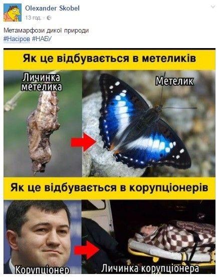 Списание 100 млн грн залога - это воровство, - Насиров - Цензор.НЕТ 8199