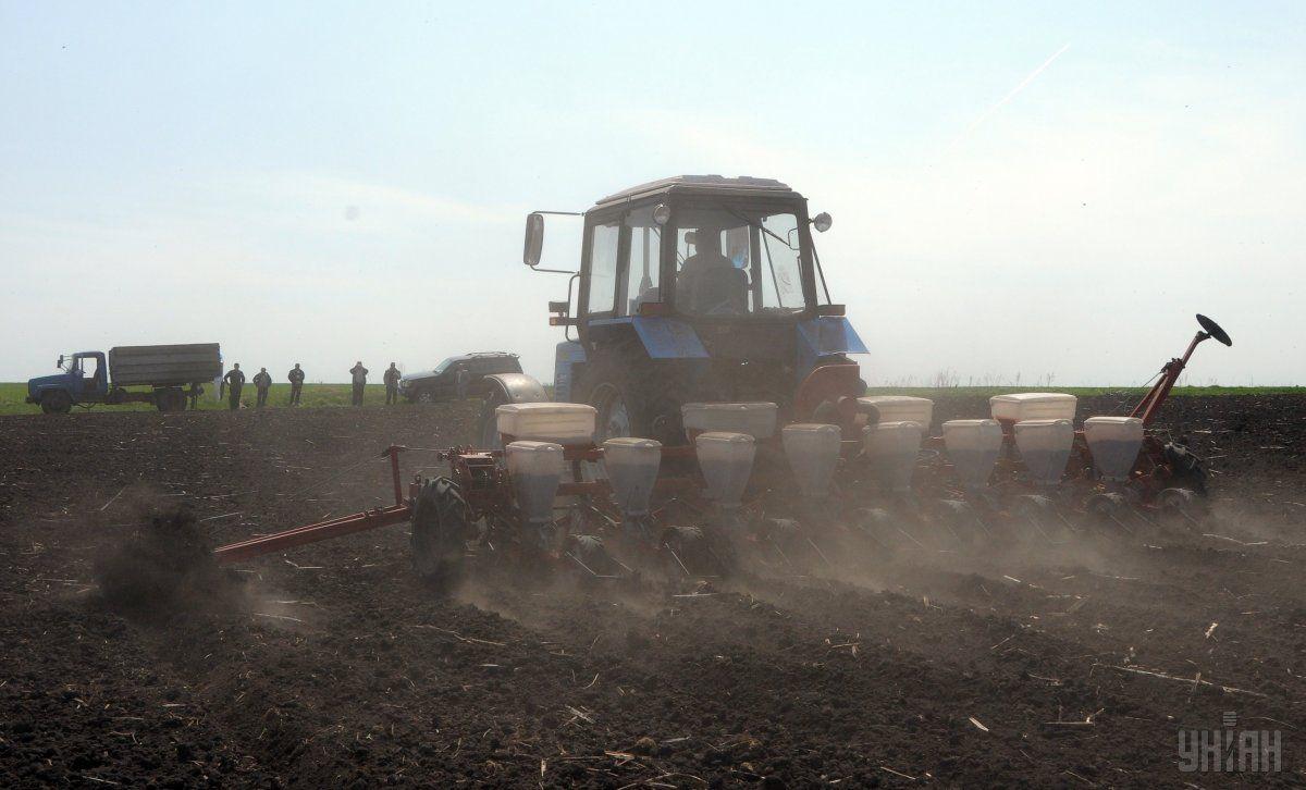 В Україні продовжено мораторій на продаж землі / фото УНІАН
