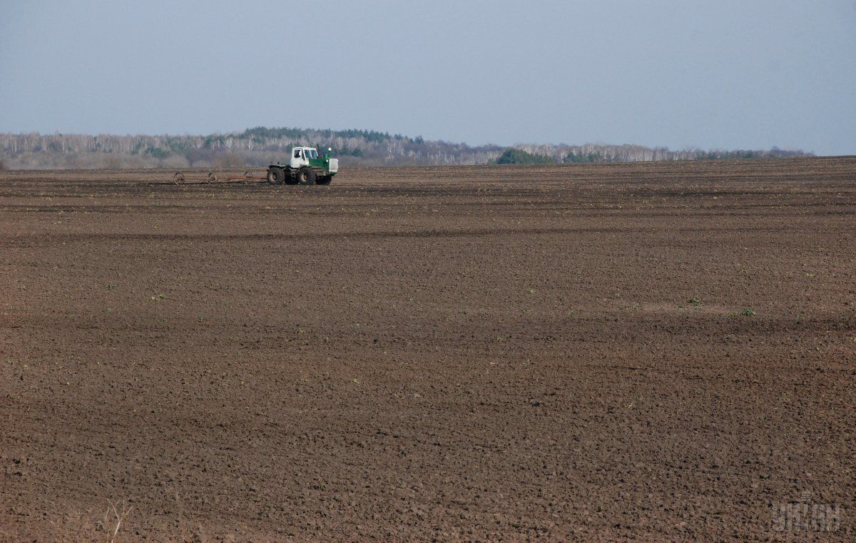 В Україні дорожчає виробництво сільгосппродукції / фото УНІАН