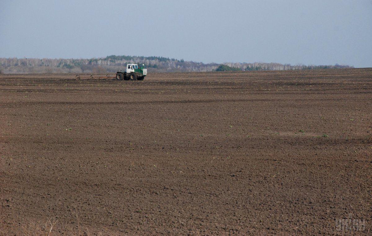 Аграрии уже засеяли ранними яровыми зерновыми культурами 42%/ фото УНИАН