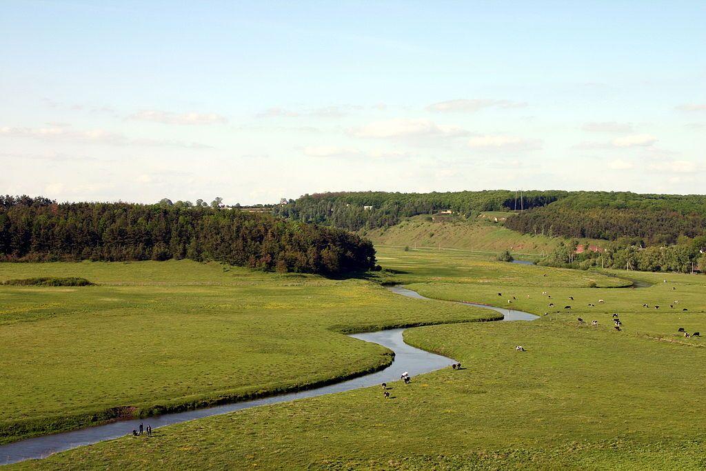 Річка Гнізна на Тернопільщині / Фото uk.wikipedia.org