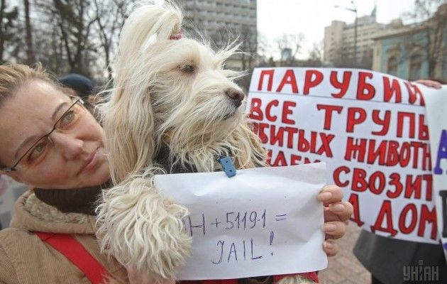 animal rights activists rally in kyiv on march 21 unian