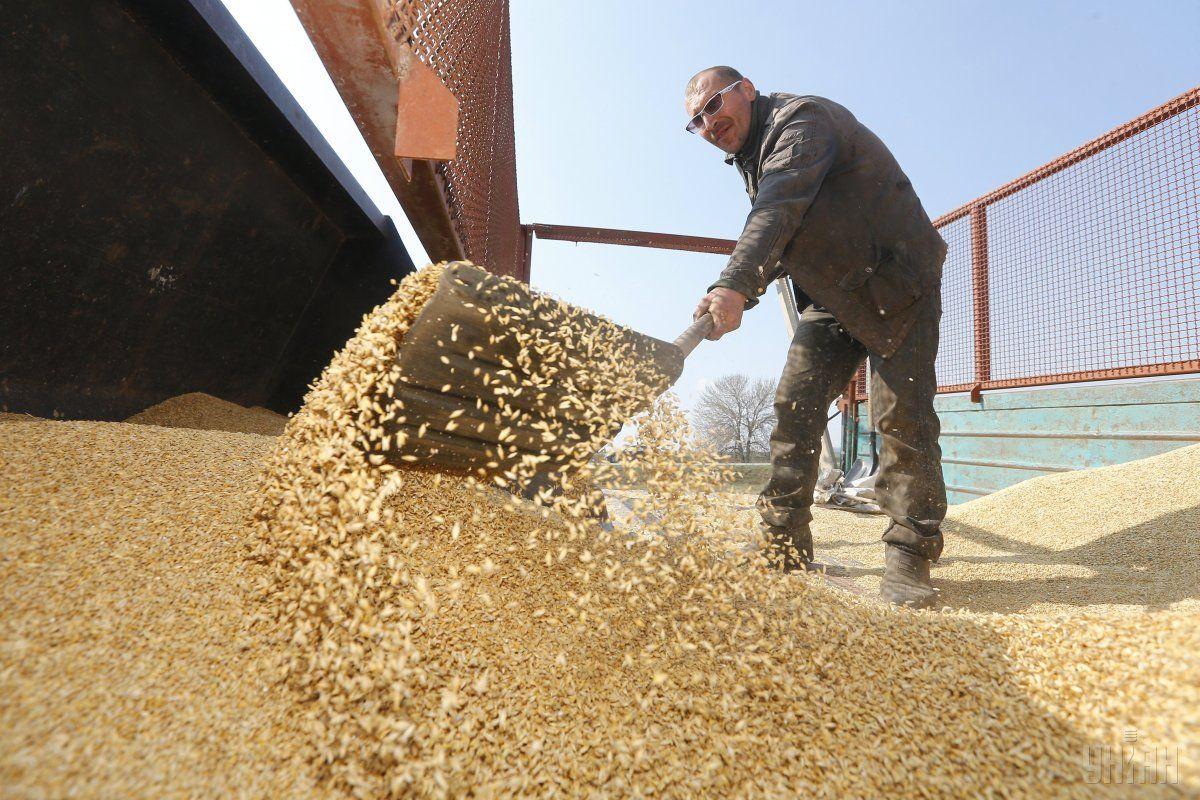 У порту «Південний» 6 вересня відкрили зерновий термінал / фото УНІАН