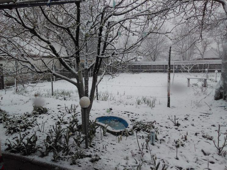 Снігопад у Лозовій / kh.depo.ua