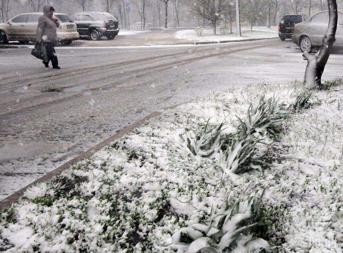 В середині тижня Прикарпаття засипле снігом