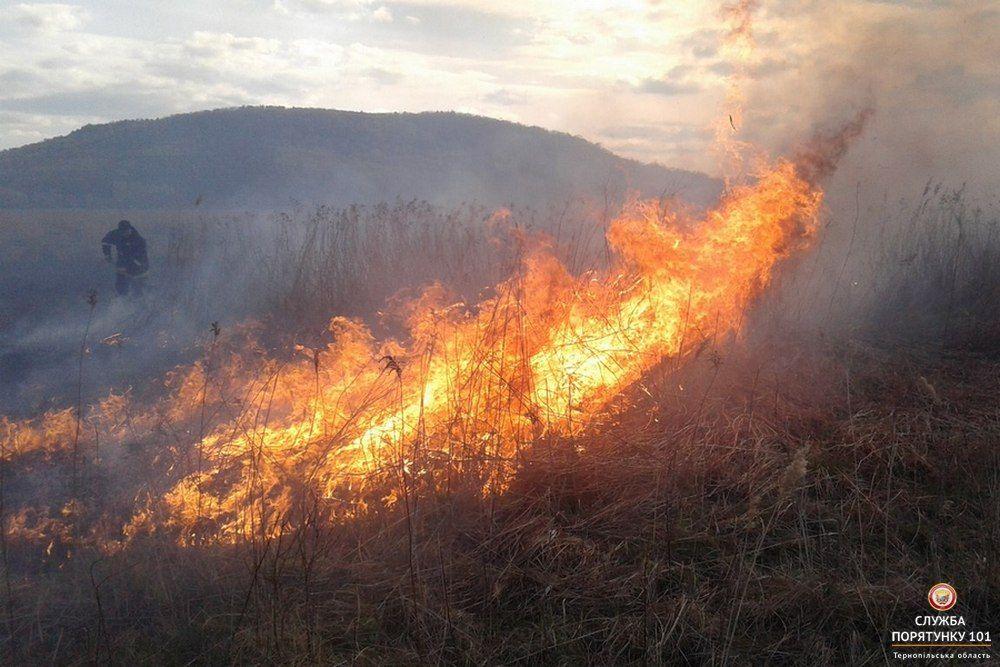 На сході та півдні зберігається пожежна небезпека / ДСНС