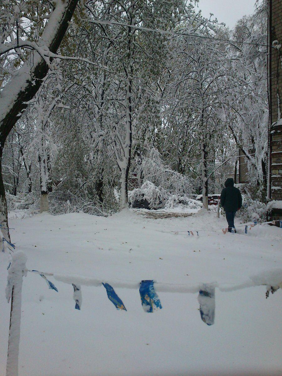 Сніг засипав дерева, які вже встигли зацвісти / фото із соцмереж