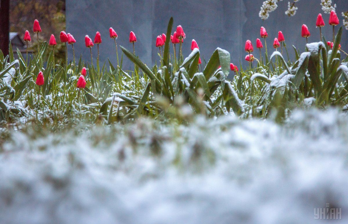 Волна похолодания накрыла практически всю Украину / Фото УНИАН