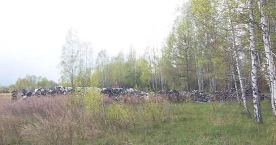 Сміття незаконно скинули у лісі / фото: kv.npu.gov.ua