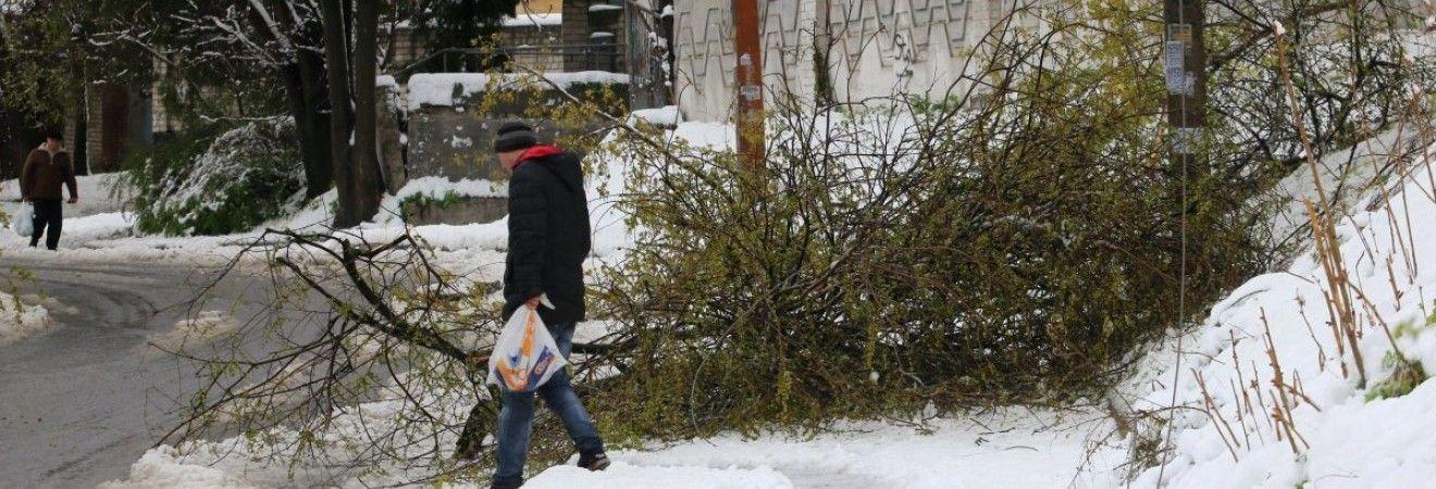 В Николаевской области количество обесточенных из-за непогоды населенных пунктов увеличилось до 62