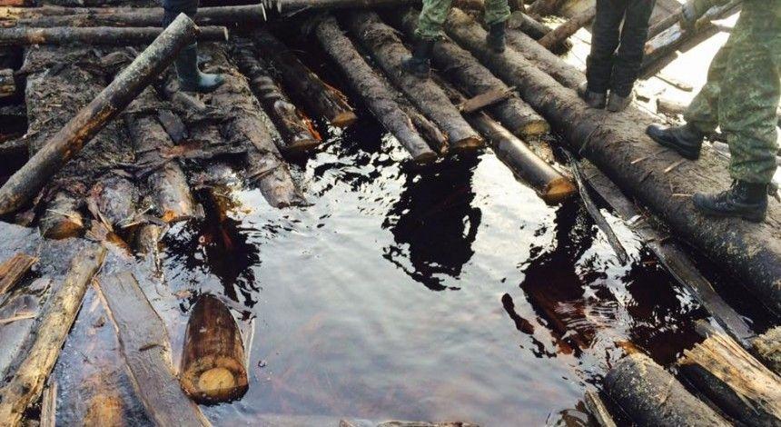 На Житомирщине депутату сельсовета вручили подозрение в незаконной добыче янтаря