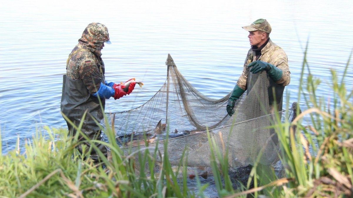 У нарушителей более 12 тонн рыбы / фото 24 канал