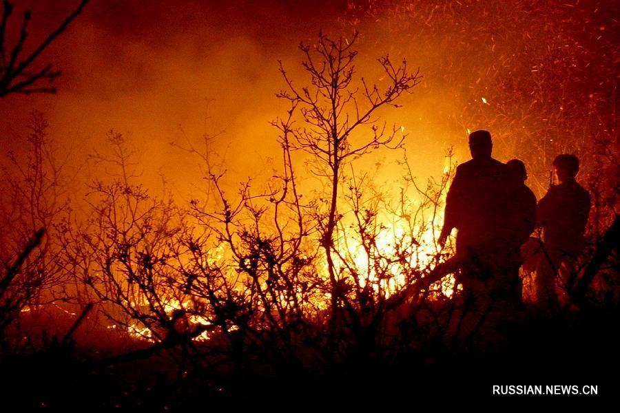 Лісова пожежа в Китаї / Xinhua