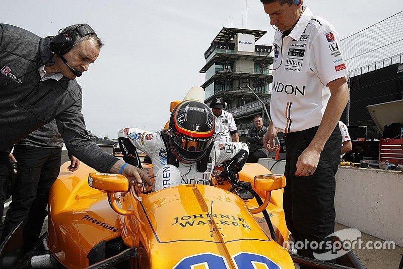 Болид Фернандо Алонсо стал причиной инцидента с гибелью двух птиц / motorsport.com