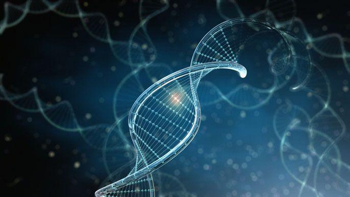 В Китаї зафіксували два випадки вагітності генетично модифікованими дітьми / universityofcalifornia.edu