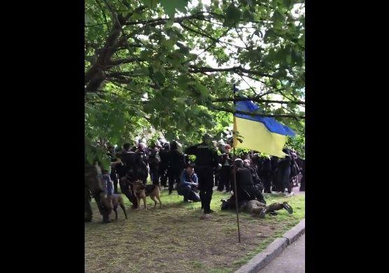 В Днепре побили ветеранов АТО / Скриншот