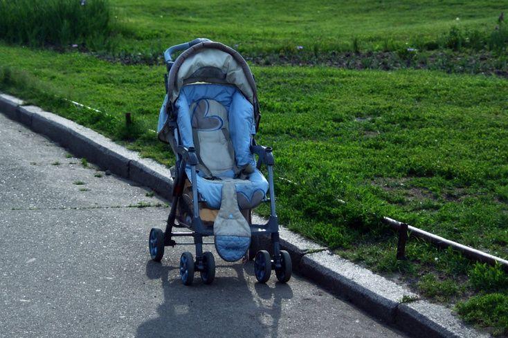 Кіт заскочив у дитячий візок \ nahnews.org
