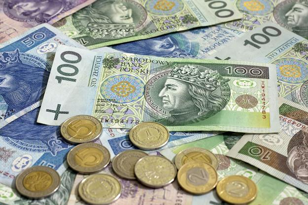 Польские злотые / www.armstrongeconomics.com