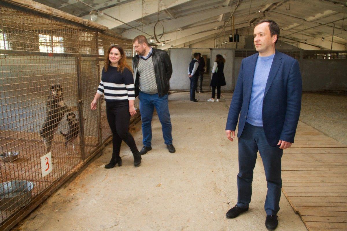 Инспекция отремонтированного приюта для животных в Киеве / фото kievcity.gov.ua
