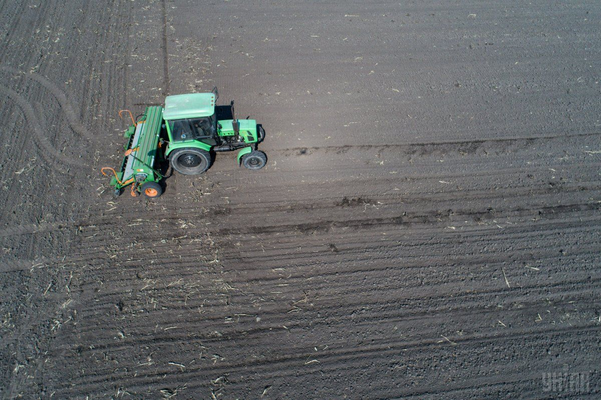 На Житомирщине засеяли 207,5 тыс. га яровыми зерновыми и зернобобовыми культурами / фото УНИАН