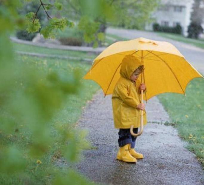 До кінця доби майже по всій Україні очікуються дощі / facebook.com/ukrgmc