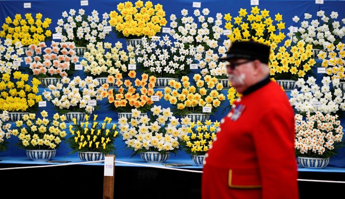 Виставка квітів у Челсі / Reuters
