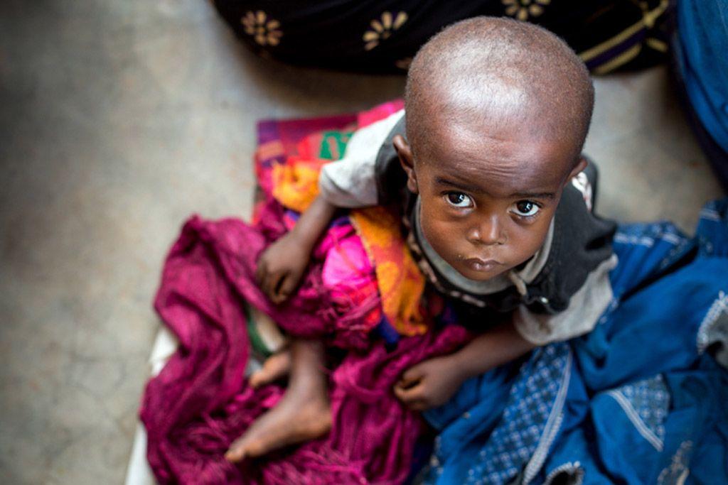 В Конго снова вспышка Эболы / Фото: ООН