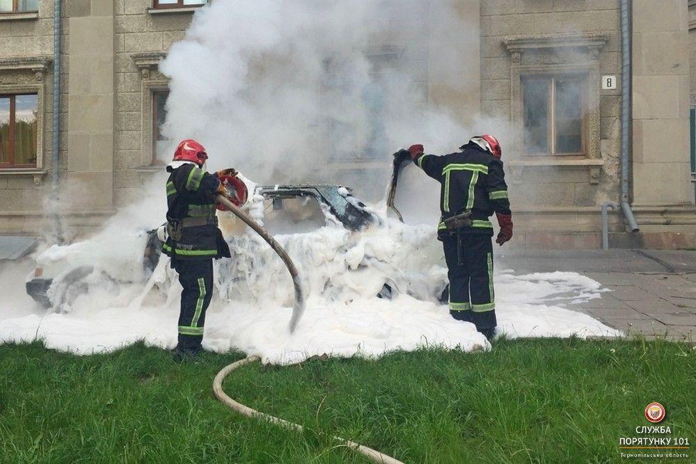 Пожежу швидко ліквівдували / Фото Управління ДСНС