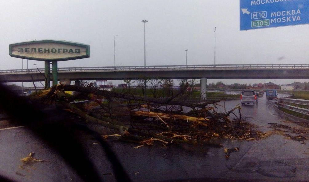 Ураган в Москве / фото: соцсети