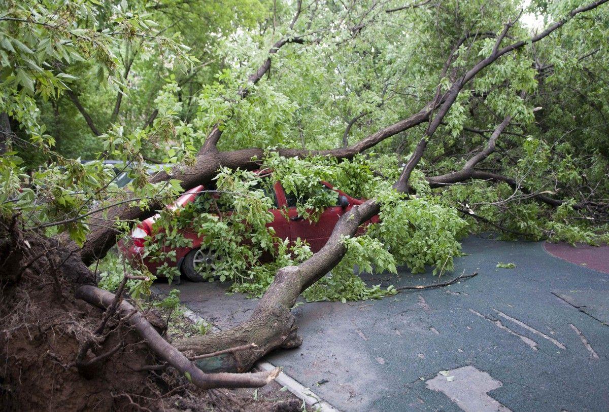 Наслідки урагану у Москві / REUTERS