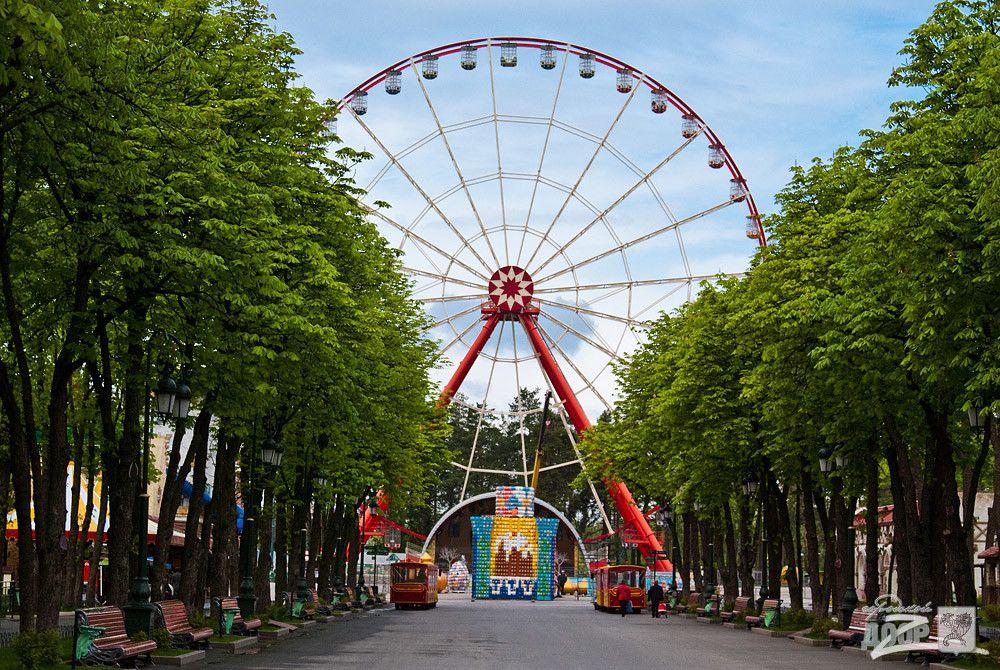 Проектирование магазинов и кафе в парках могут стать обязательными / фото Городской Дозор