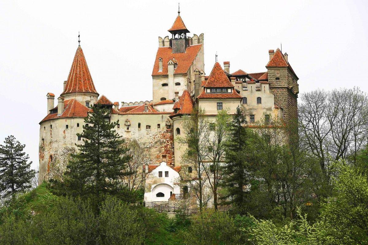 Замок Дракулы закрыли для туристов. гостей могут съесть