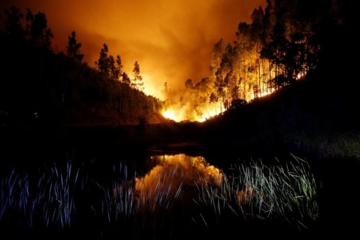 Лісова пожежа у Португалії, ілюстрація / REUTERS