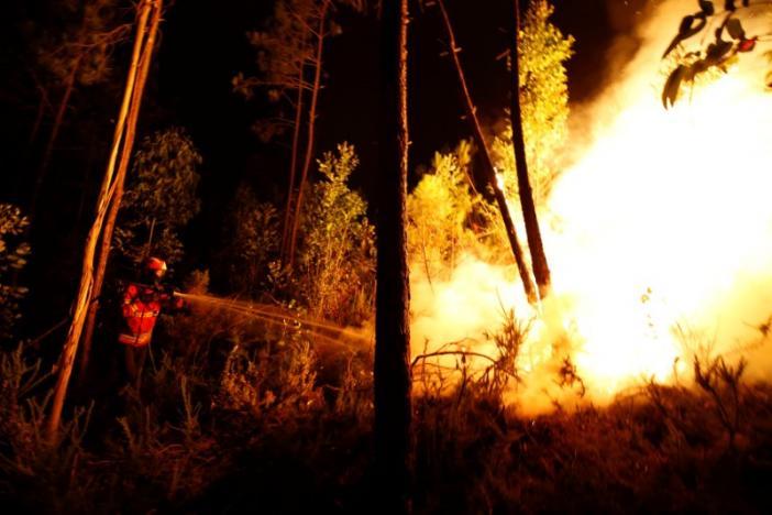 Число жертв в итоге лесных пожаров вПортугалии возросло до57
