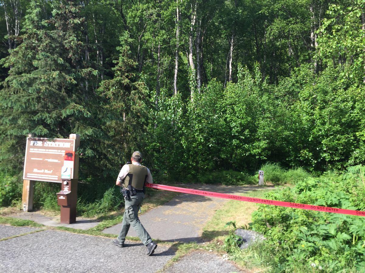 Бегун успел отправить СМС и сообщить, что за ним гонится медведь / фото Alaska Dispatch News