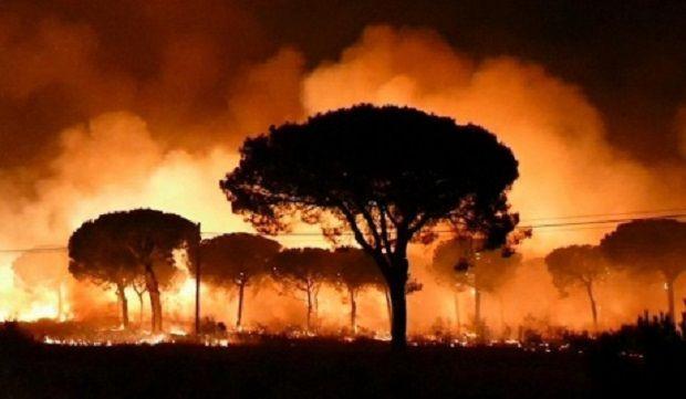 Лісова пожежа поширилась на національний парк / фото El Mundo