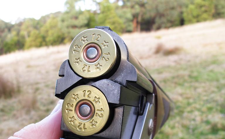 Незареєстровану зброю правоохоронці вилучили / Фото Peter.Thurgood via flickr.com