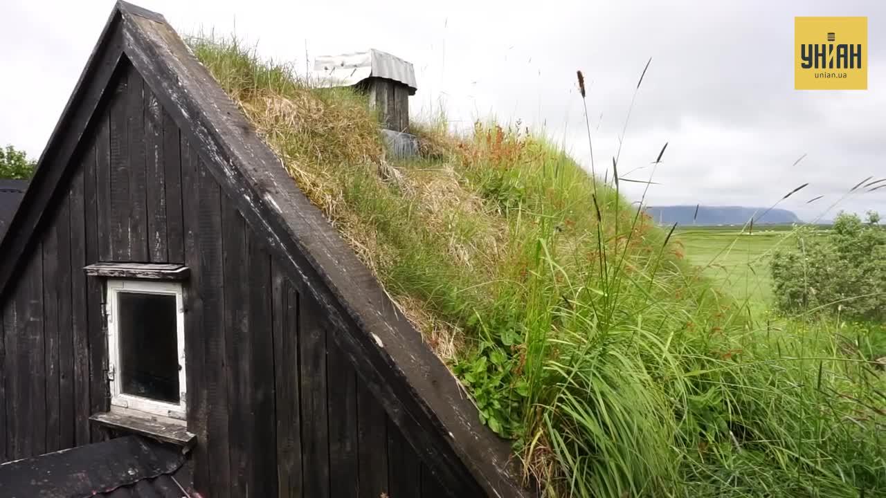 Зеленые крыши экологичны и стабилизируют температуру в доме / скриншот УНИАН